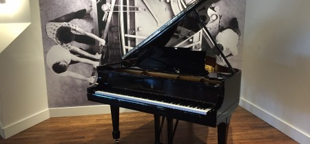 Unique Steinway Model M Heirloom in Ebony Polyester